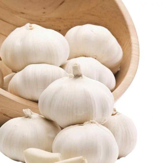 Zhande Garlic 5cm carton
