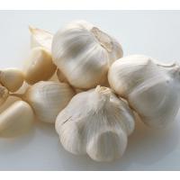 Minnong Garlic 5cm mesh bag 20KG