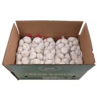 Minnong Garlic 5cm Carton 10KG