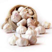 Jinxiang Garlic 5cm mesh bag 10KG